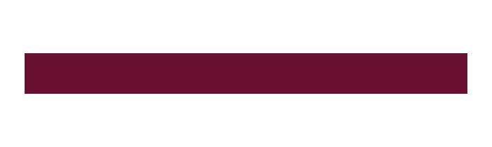 Logo damovo